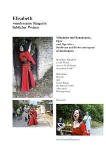 Rückblick Ritterfest 2013